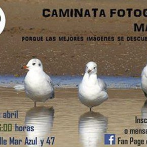 CAMINATA FOTOGRÁFICA EN MAR AZUL!!